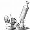 Image for Hooke's microscope: engraving