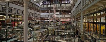 Image for Pitt Rivers Museum, looking north-east across the Court