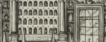Image for From apothecary shop to cabinet of curiosities