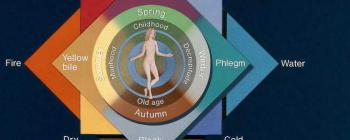 Image for The four elements and the four Galenic humours