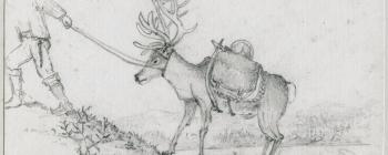 Image for Drawing of a saddled reindeer 1