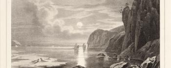 Image for Lithograph of men hunting sea lions