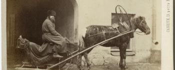 Image for Russian sleigh