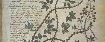 Image for Clone of Vienna Manuscript of Dioscorides