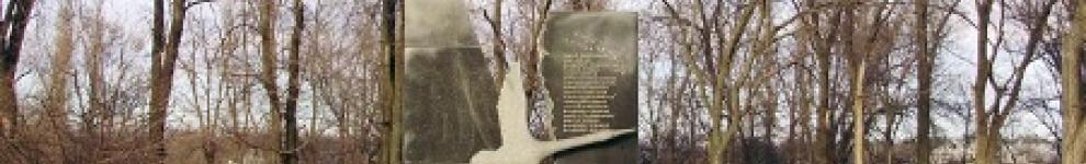 Image for The Pakhtakhor-79 Monument (Uzbekistan/Ukraine)